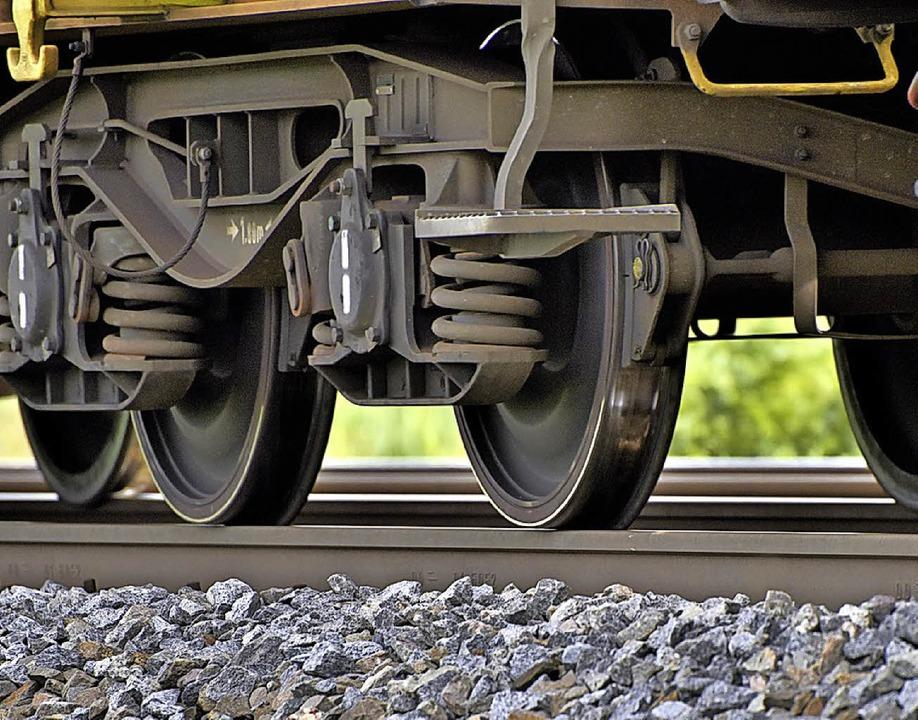Ein Güterzug steht auf der Rheintalstrecke bei Kenzingen.  | Foto: Siegfried Gollrad