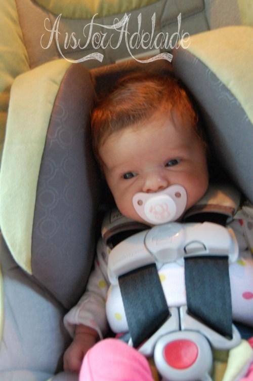 5 weeks infant insert