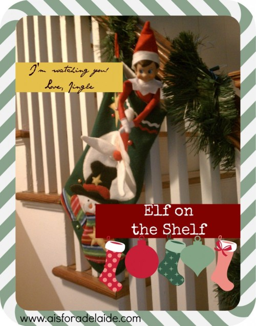 #elfontheshelf Jingle #aisforadelaide