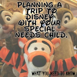 Planning A Trip To Disney With Your Special Needs Child: What you need to know