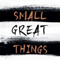 Small Great Things - Jodi Picoult