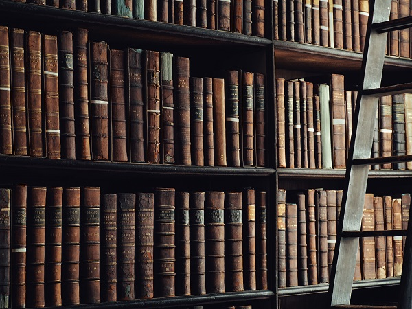 10/01/2019 – CFP: The Relevance of Reading, Translating and Adapting