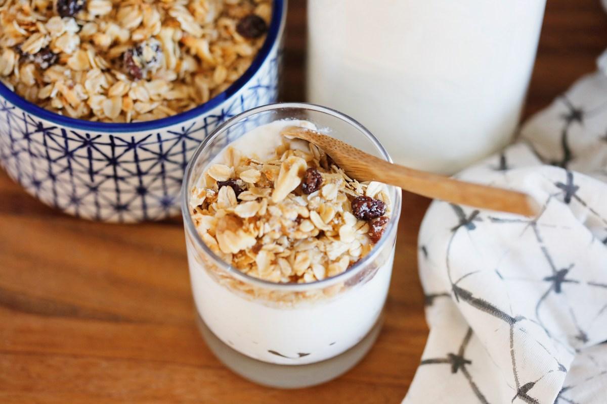 homemade yogurt with homemade granola