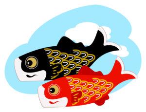 真鯉と緋鯉