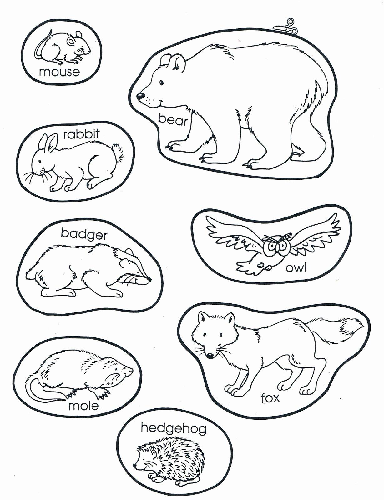 Hibernation Worksheets For Preschoolers