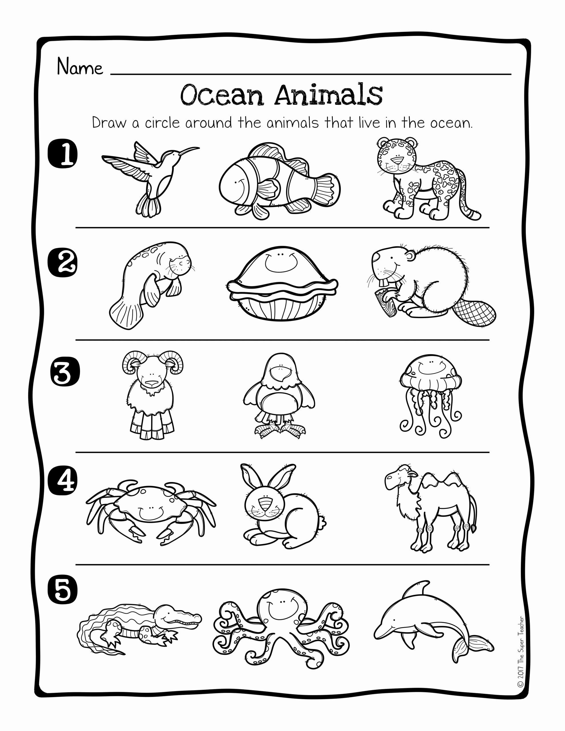 Sea Creatures Worksheets For Preschoolers