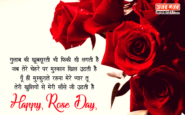 Happy-Rose-Day-Images-in-Hindi