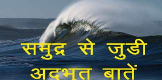 interesting facts about the ocean in hindi
