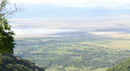 ngorongoro crater bottom tanzania private expeditions