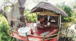 Tarangire river camp tanzania private safaris