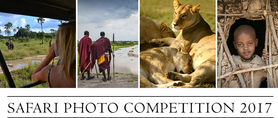 Safari Photo Competition 2017 from Ajabu Adventures