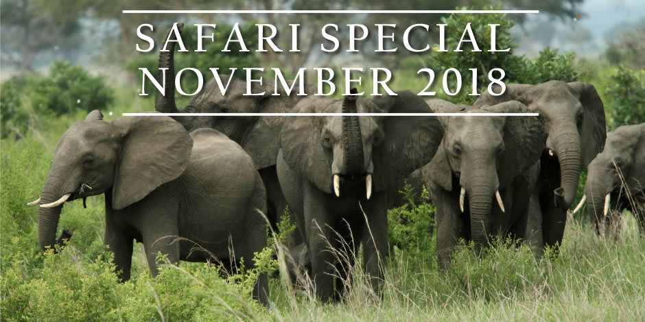 Special offer: 8-days private safari Tanzania – November 2018