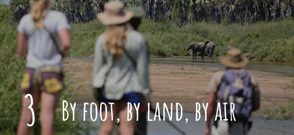 Safari by foot, by land and by air