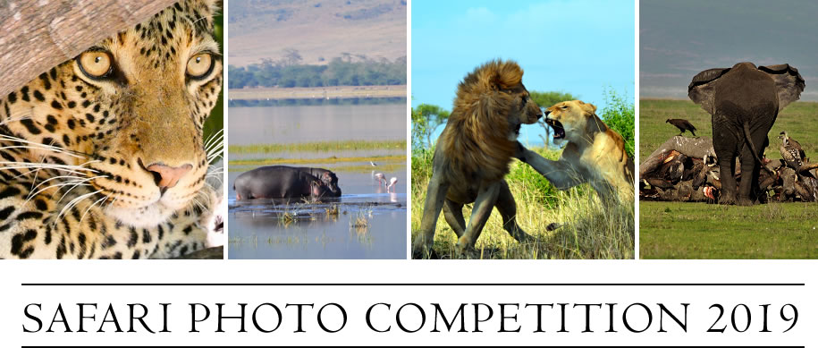 Safari Photo Competition 2019 by Ajabu Adventures
