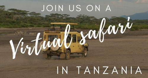 Join us on a virtual safari in Tanzania