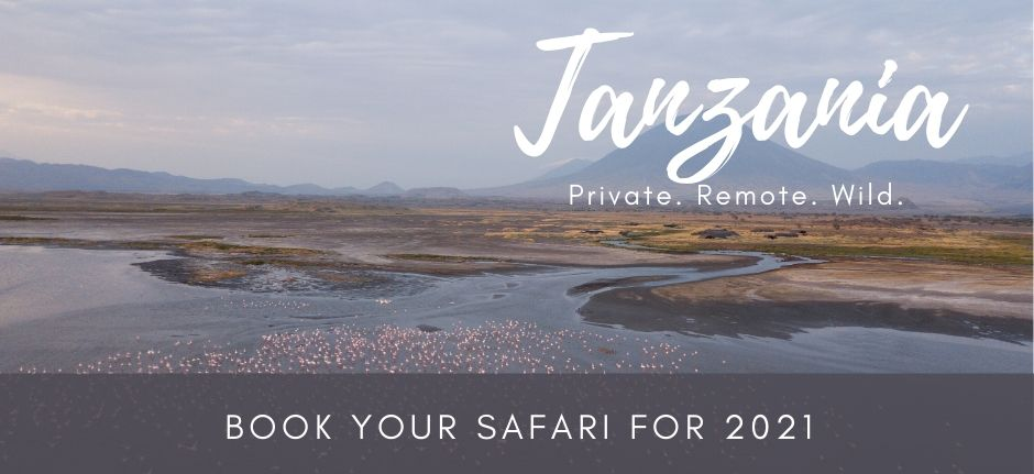 Book now your private safari to Tanzania for 2021