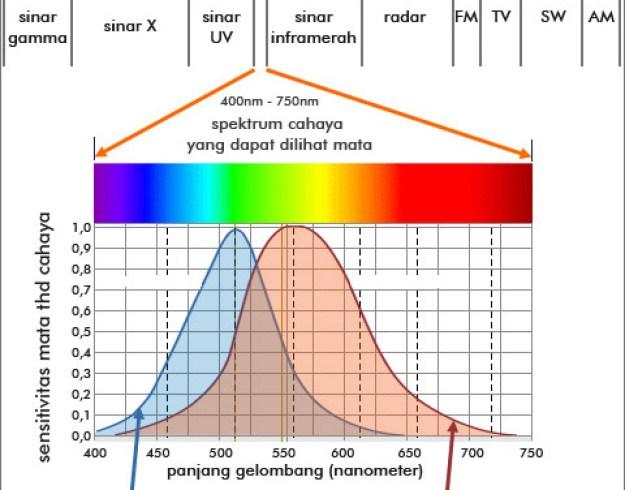 warna-warna spektrum