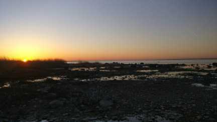 Kõera küla rand, märts 2018. Autor: Tõnis Vokk
