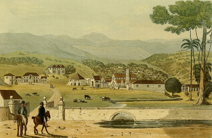 painting of a tour of jamaica