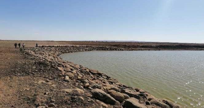 Ergani'de 5 hayvan içme suyu göleti onarıldı