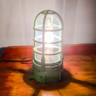 Industrial Cage Light