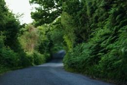 Irish summer roads