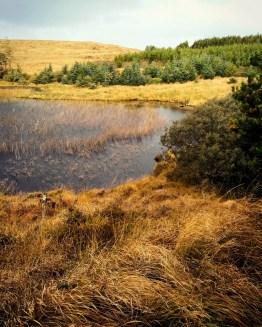 the hidden Lake 2017 (3)