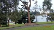 Sydney Harbour Bridge from Botanic Garden