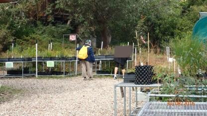 Community Garden - Carer blocked out