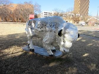 bison-3