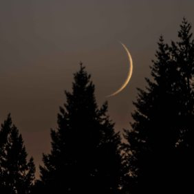 Moonset, 4Aug2016, Photo by Allan J Jones