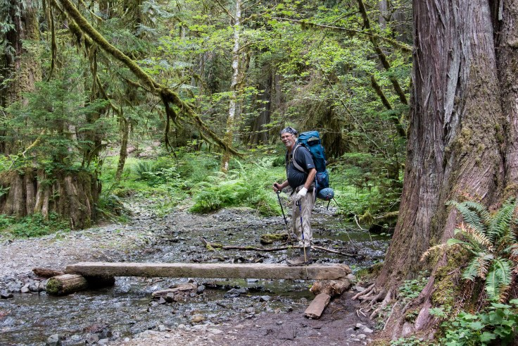 Bridge over Slate Creek, North Fork Skokomish trail, Olympic National Park