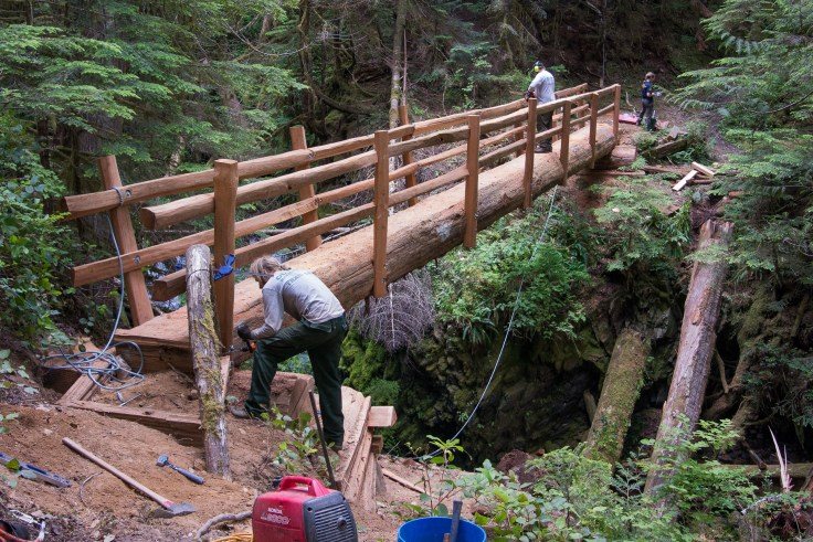 New bridge, N Fork Skokomish Trail, Olympic National Park, 4July2016, Photo by Allan J Jones