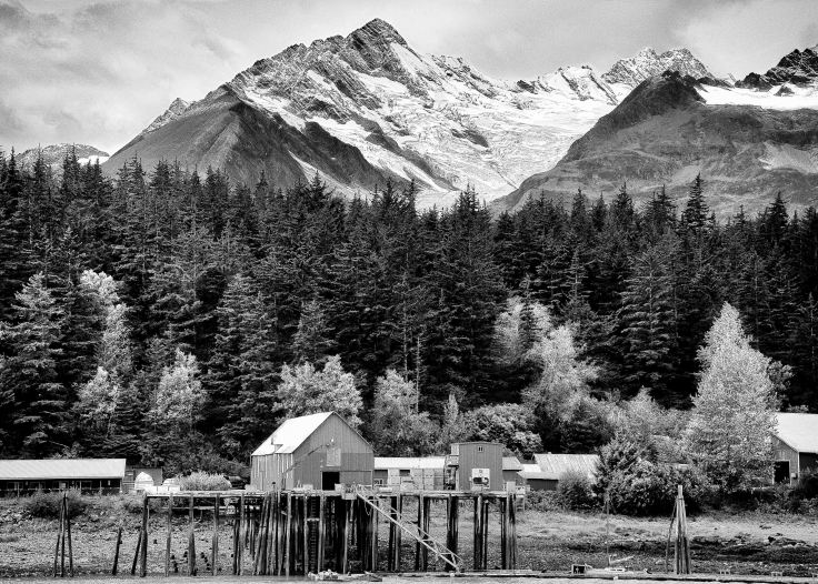 Cannery on Letnikof Cove, Haines, Alaska