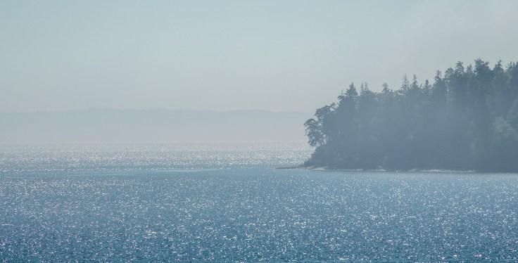 Nodule Point, Marrowstone Island, WA by Allan J Jones Photography