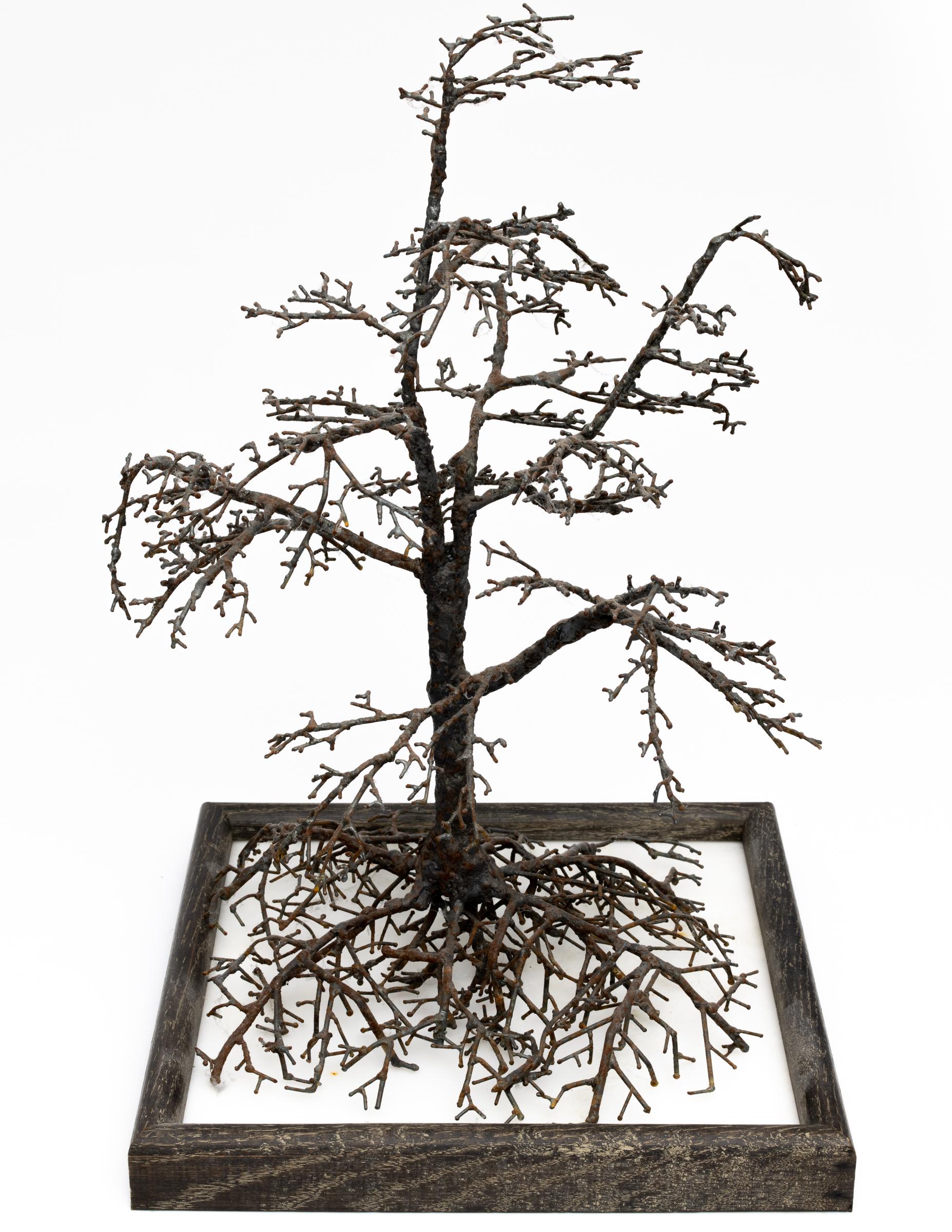 Welded Steel Tree - 1 by Allan J Jones