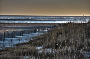 tybee-dunes-web