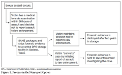 Figure 1. Process in the nonreport option