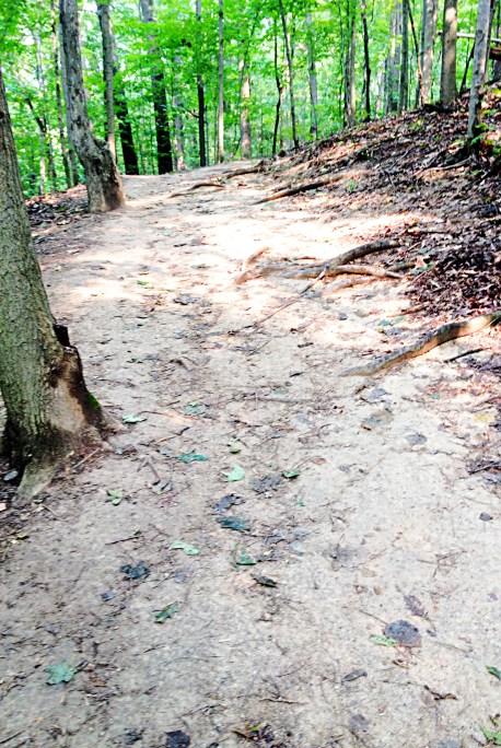 Brandywine Falls Gorge Trail