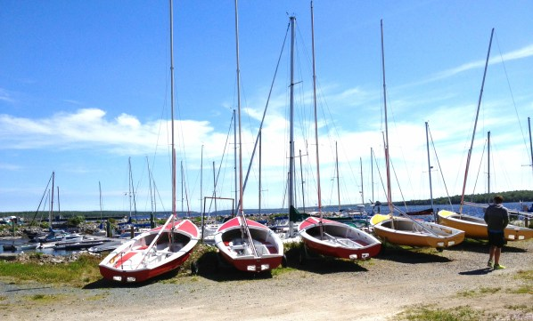 red and yellow sailboats dry-docked along the harbor