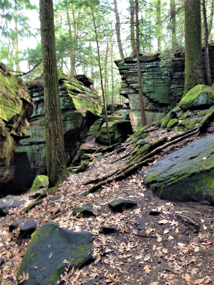 Kendall Ledges is a favorite hiking trail just south of Cleveland in the Cuyahoga Valley National Park.