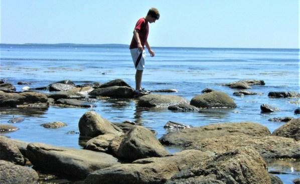 A young man carefully climbs rocks around tidepools.