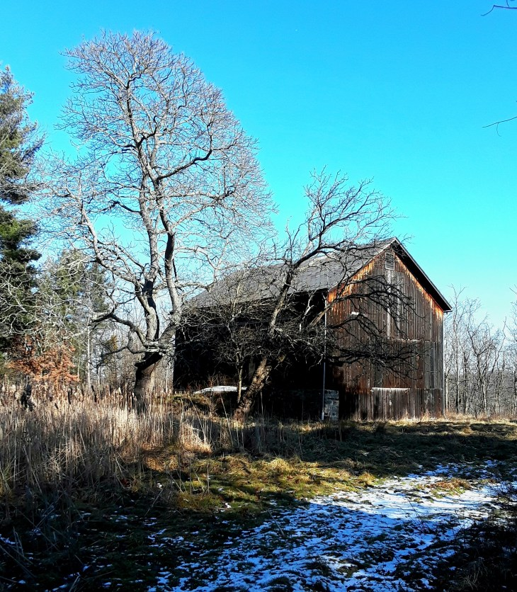 A weathered wood barn is silhouetted by a bright blue sky