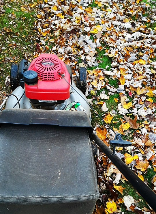 use a mulching mower to chop up and then bag leaves for composting