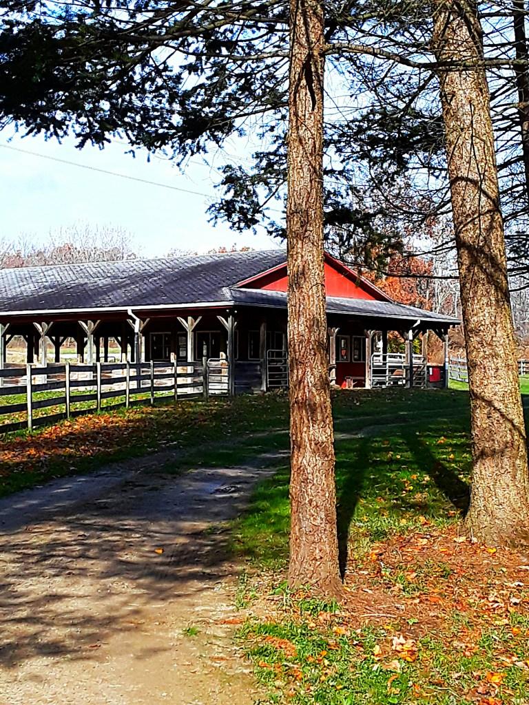 summer barn has open walls