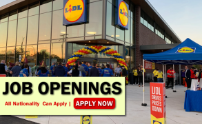 Lidl Job Opportunities
