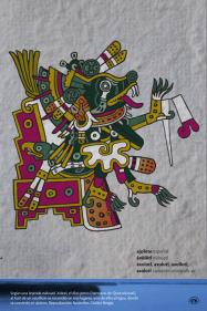 Según una leyenda náhuatl, Xolotl, el dios perro (hermano de Quetzalcoatl), al huir de un sacrificio se escondió en tres lugares, uno de ellos el agua, donde se convirtió en ajolote. Reproducción facsimilar, Códice Borgia