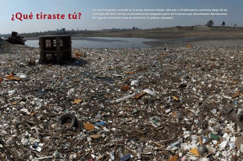 En esta fotografía, tomada en la presa Antonio Alzate, ubicada a 20 kilómetros corriente abajo de las Ciénegas del Alto Lerma, se encuentra una pequeña parte de la basura que desechamos diariamente. En lugares como éste trata de sobrevivir el ajolote. ¡Ayúdalo!