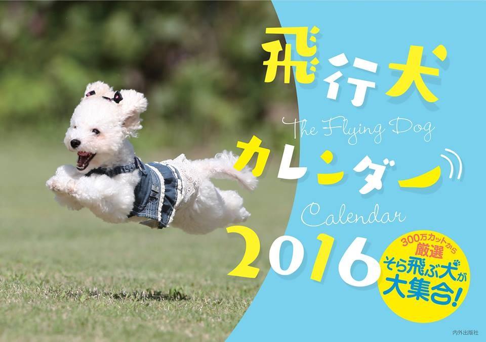 20160326hikoken13