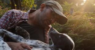 Karma Yoga to the Rescue of Stray Animals